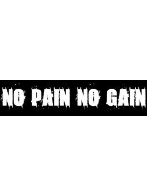 No Pain No Gain Bumper Sticker