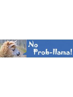 No Prob-llama Bumper Sticker