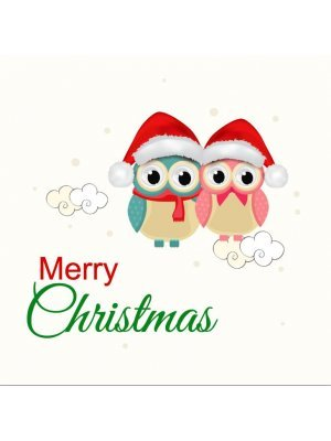 Christmas Owls Label